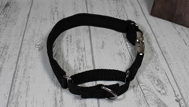 Kombiniertes Halsband aus Aluminiumklickverschluss und Martina