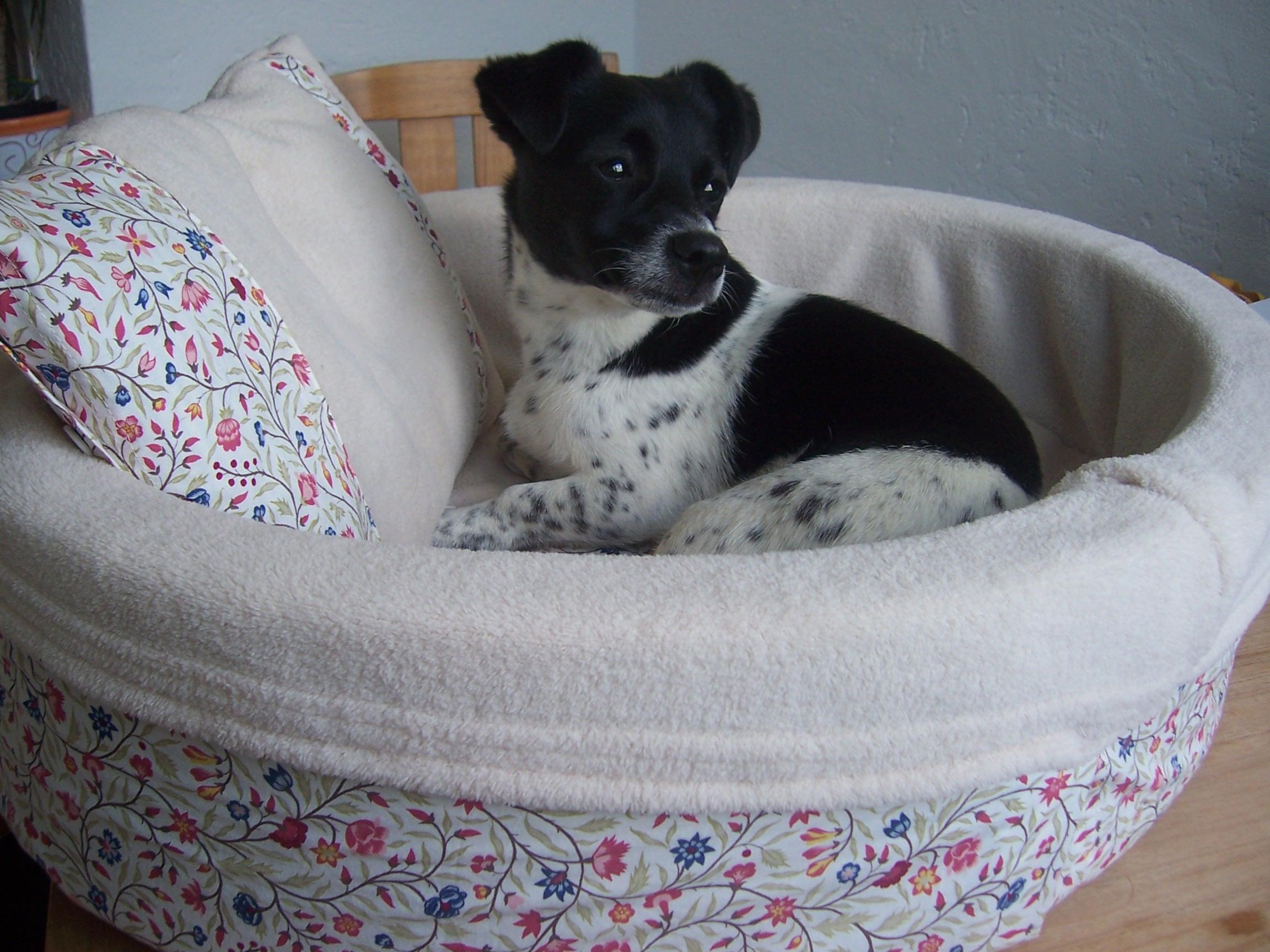 einzigartig hundespielzeug selber machen aus stoff tierspielzeug. Black Bedroom Furniture Sets. Home Design Ideas