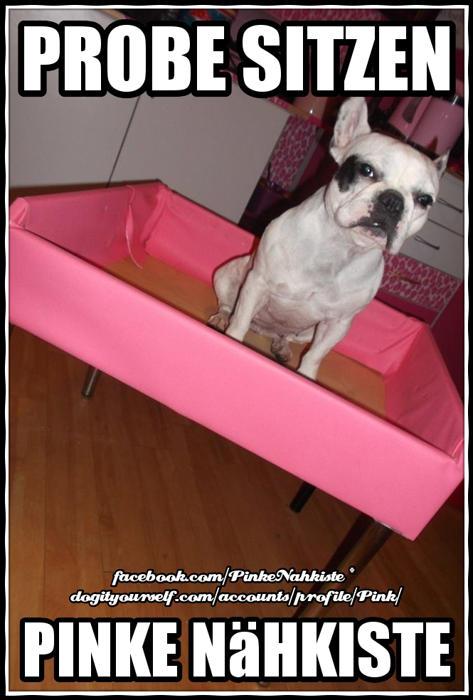 hunde sofa von pink. Black Bedroom Furniture Sets. Home Design Ideas